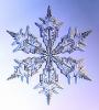 Snowflakes_30