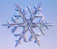 Snowflakes_33