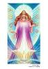 Вознесенные Владыки, Архангелы и Ангелы